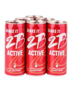 2B ACTIVE 250ml 6er Pack