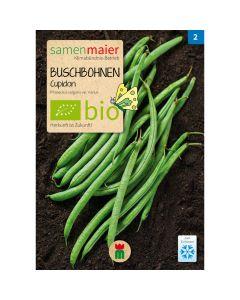 Bio Buschbohnen Filetbohne Cupidon - Saatgut für zirka 25 Pflanzen