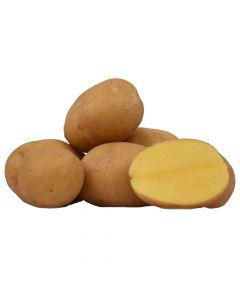 Kartoffel Belmonda 5kg