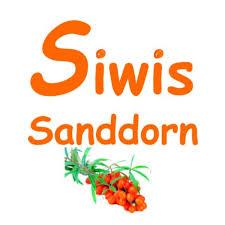 Siwis Sanddorn